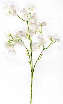 Ветка вишни в снегу/24/-50cm - фото 11744