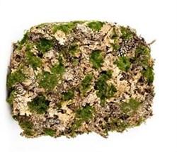 Мох -искусственный камень - фото 13031