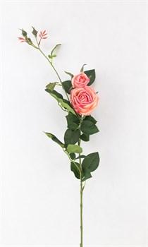 Роза(розовый)(мин24) - фото 9223