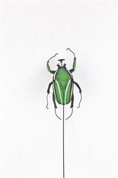Жук(зеленый) - фото 9251