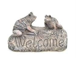 Лягушки на камне