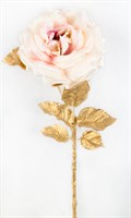 Роза (розовый) (12)