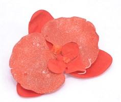Орхидея на прищепке (оранж) (мин.48шт)